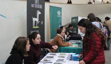Feria de Solidaridad: responsabilidad social y servicio a la comunidad.