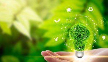 La UAI se compromete con el medio ambiente
