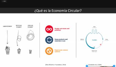 Innovación en modelos de negocios para una Economía Circular