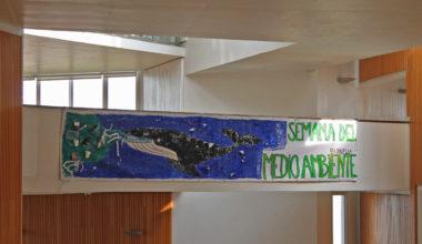 La Semana del Medioambiente y su concientización en el Campus Viña